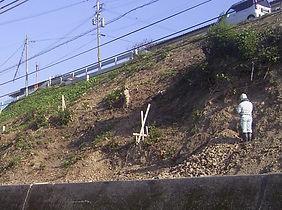 地表踏査-地形・地質調査.JPG