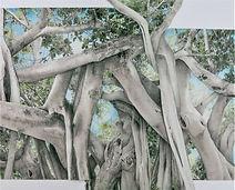 Deborah Perlman -Banyan Canopy 100.jpg