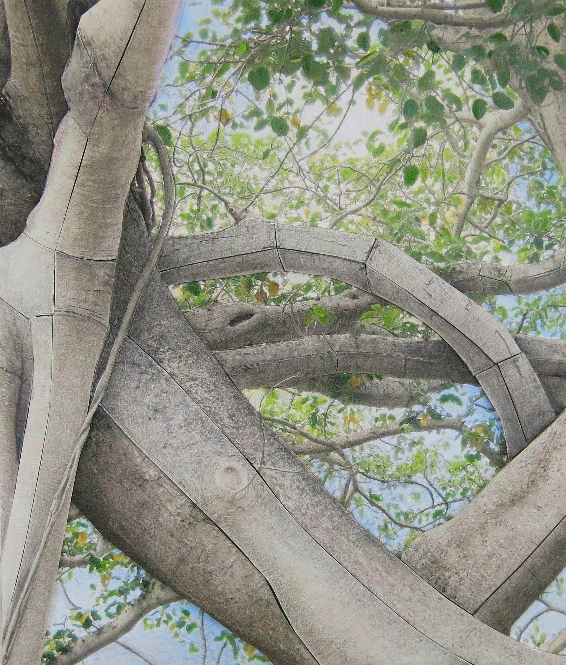 Banyan Study 300