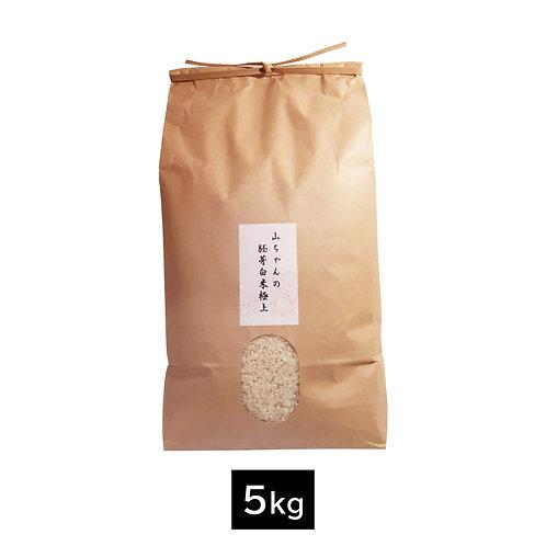 胚芽極上米【5kg】
