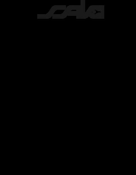 SakiCreativeProcessDiagram3.png