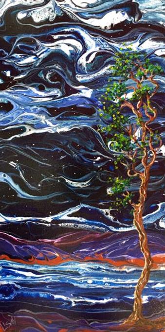 Starry Night 2 FS.jpg