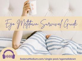 Ego Meltdown Survival Guide #46