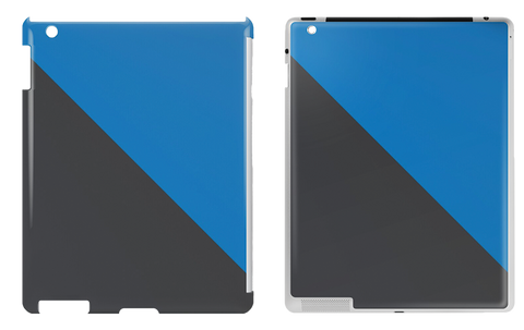 iPad Cases & Skins