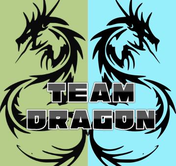 TEAM DRAGON ロゴ.PNG
