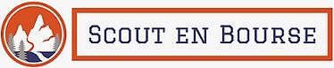 scout-en-bourse logo website.png