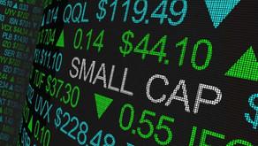 Les 6 Small-Cap ESG de 2020