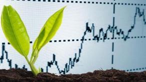 26% des investisseurs recherchent désormais des investissements socialement responsables.
