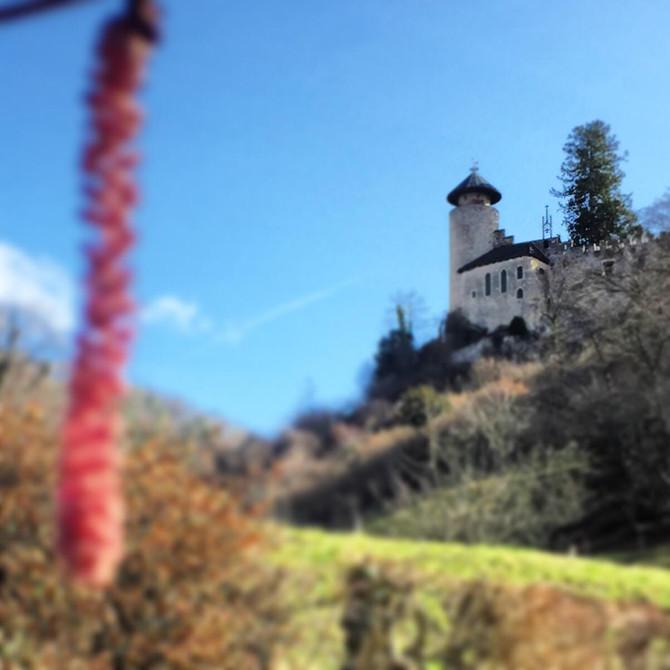 Geschichtsträchtige Burg in Arlesheim