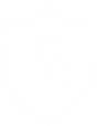 CybersecurityICON.png