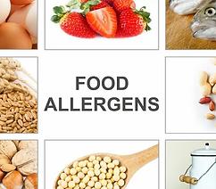 08_Food_Allergens.webp