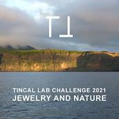 TINCAL LAB CHALLENGE 2021