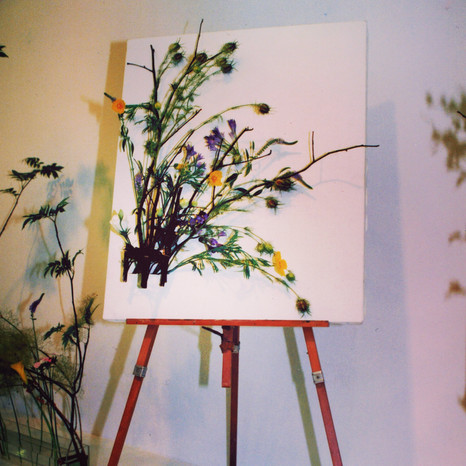 drawing with flowers