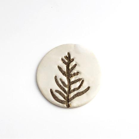Conifer #1T