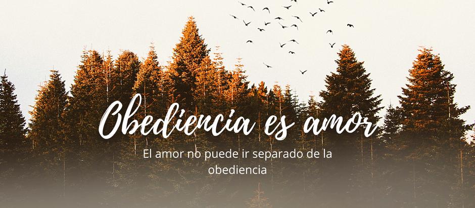 Obediencia es amor