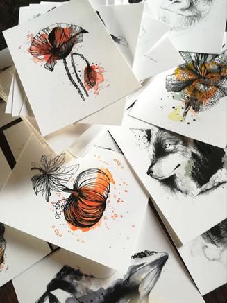 cartes postales dessin