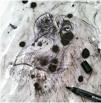 illustration-singe-croquis