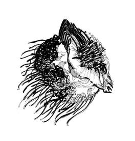 meduse illustration tatouage silowane