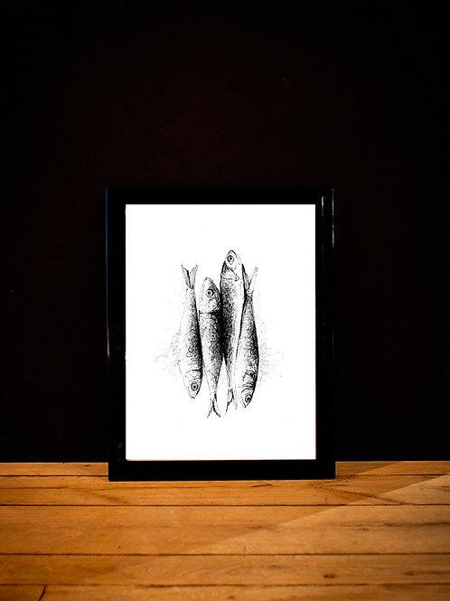 affiche sardine - dessin noir et blanc silowane