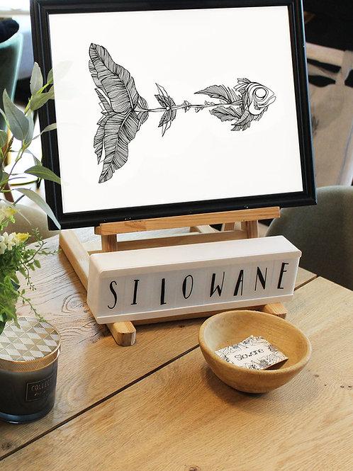 affiche poisson cadre