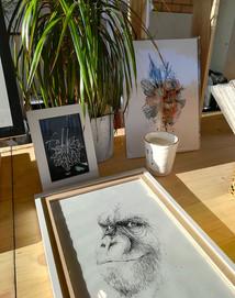 marche-illustration-singe-silowane