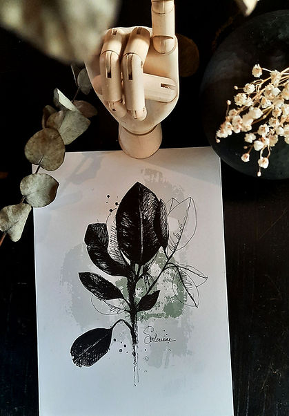 affiche-dessin-plante-fond-noir.jpg
