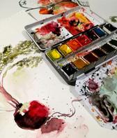 radis-aquarelle-silowane