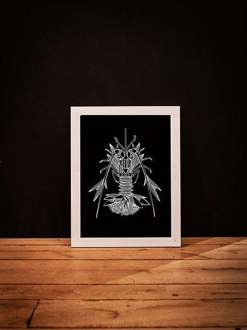 cadre illustration homard