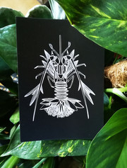 homard-illustration
