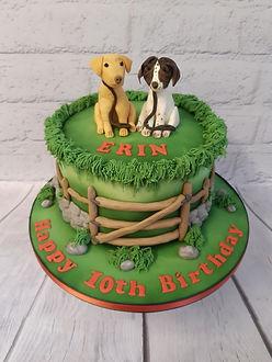 Erins 10th  Cake.jpg