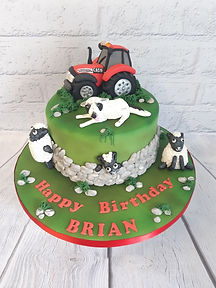 Brian's 60th Cake.jpg
