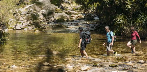 Abel-Tasman-Coast-Track-guided-walk-1.jp