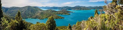 Queen-Charlotte-track-guided-walk-NZ.jpg