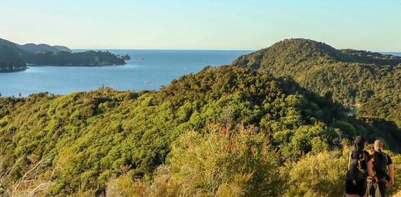Abel-Tasman-Coast-Track-guided-walk-3jpg