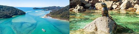 Abel-Tasman-Coast-Track-walk.jpg