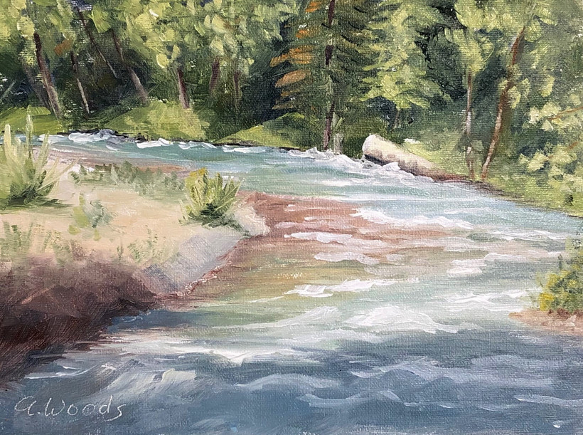 Dungeness River at Forks Campground