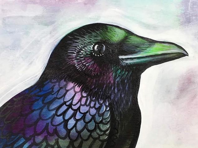 Formal Crow