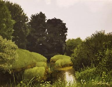 Nisqually Swamp