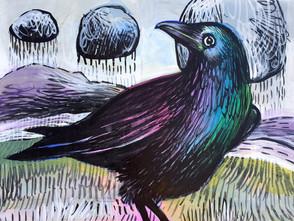 Rainy Day Crow