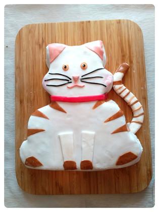 Kedi pastası
