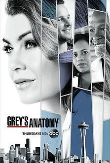 Greys anaotmy.jpg