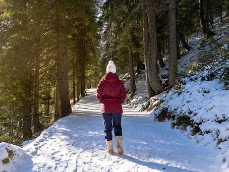 8 bellas ideas de actividades que hay que hacer en Quebec este invierno