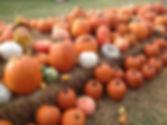 Fall20142.jpg