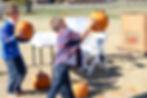 Orr's Gourd Wild.jpg