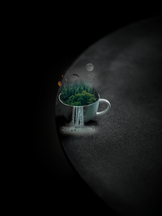Forest in the Cup