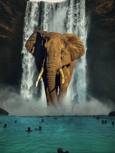 Elephant Waterfall.png