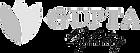logo-main-horiz-2_edited.png