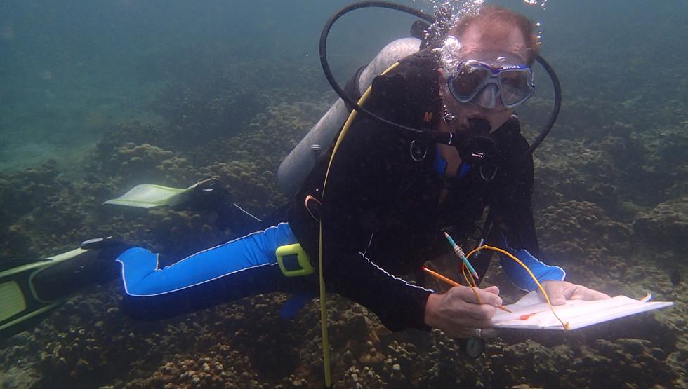 Diver JW.jpg