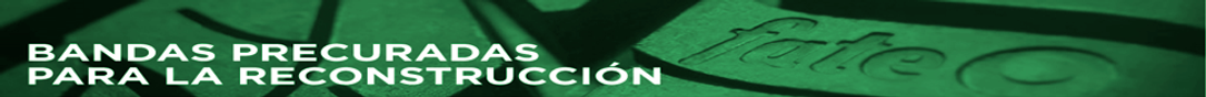 Banner Fate verde.png