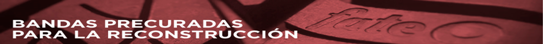 Banner Fate 1.png